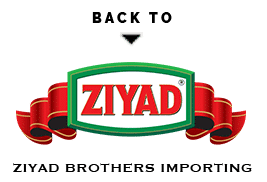 back-to-ziyad